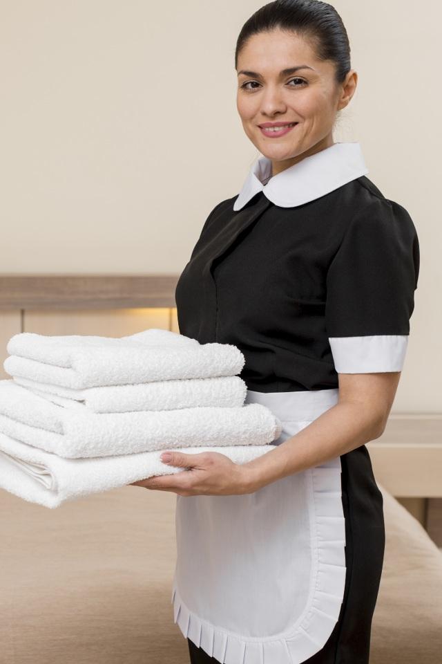 offre d'emploi femme de chambre